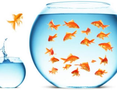 Groupe ou individuel : Quelle pratique ?