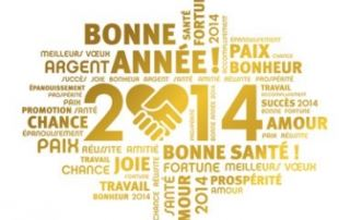 voeux2014