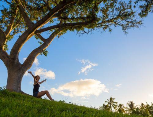 Stage d'été : Sophrologie et Méditation Pleine Conscience