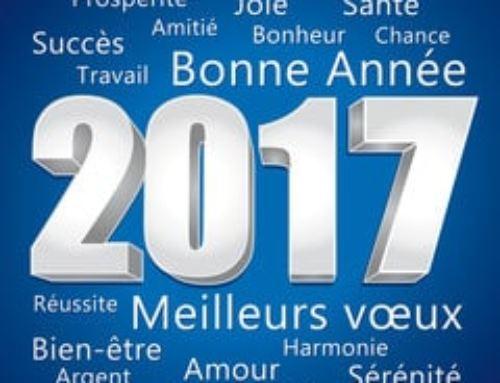 Tous mes vœux pour 2017